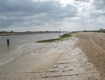 River Rother - seabound
